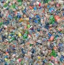 L'impact du plastique sur l'environnement