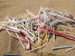 Optons pour les pailles réutilisables pour éviter que les pailles en plastique ne se retrouvent dans la nature