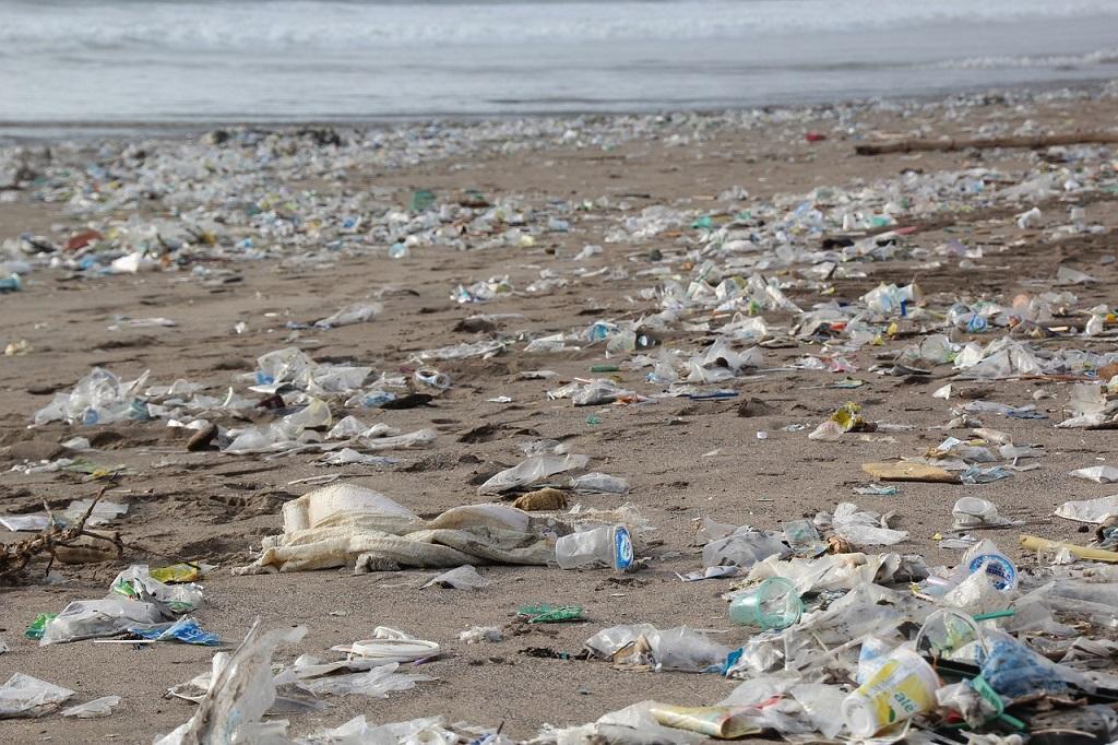 La lutte contre les plastiques à usage unique est entamée par Nicolas Hulot