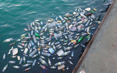 Soupes de plastiques : comment les éviter ?