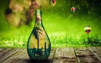 La consigne des bouteilles réutilisables, solution d'avenir